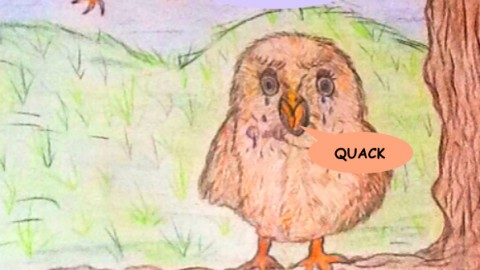 THE BALLAD OF THE QUACKING OWL