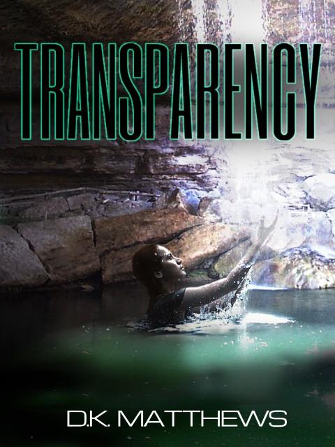 Transparency Novel