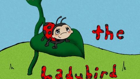 Jasmine The Ladybird