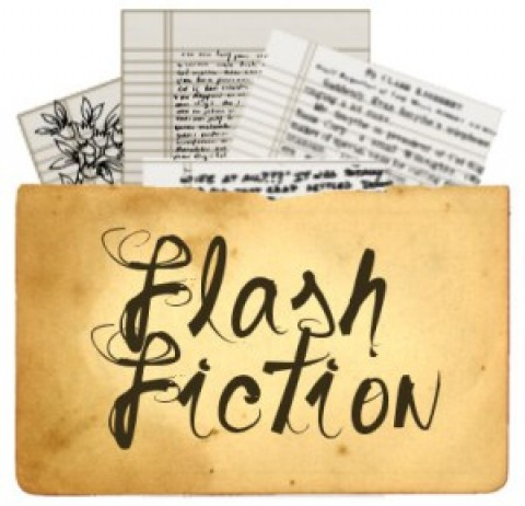 A piece on the noble art of writing 'Flash Fiction'