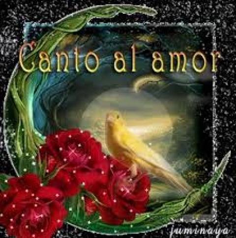 AMOR …. amor….