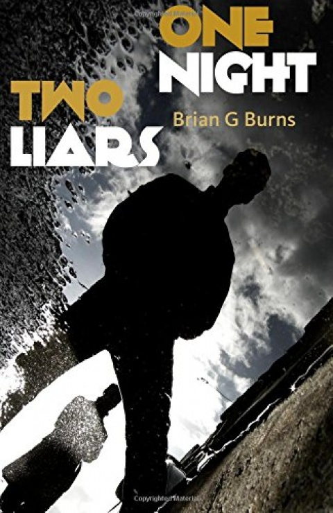 One Night, Two Liars – a work of unsettling psychological fiction