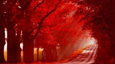 The Red Road to Hades