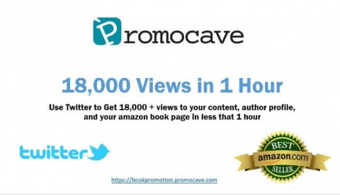 Book Marketing on Twitter for 1 Hour