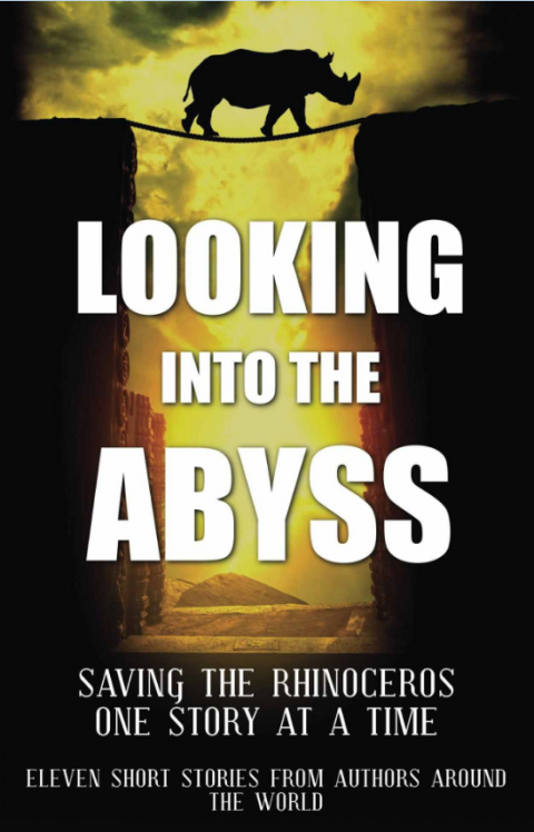 Looking into the Abyss
