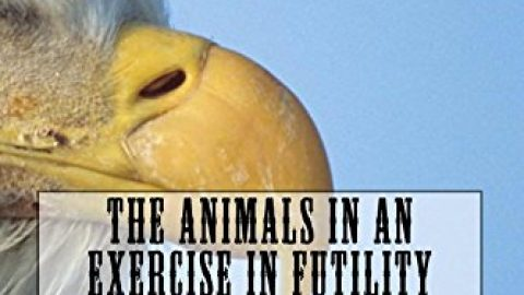 The Animals In An Exercise In Futility