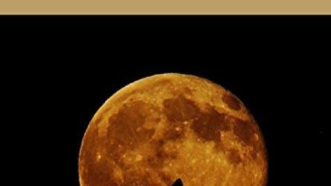 Цикл полной луны
