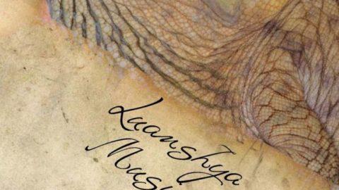 Luanshya Musings