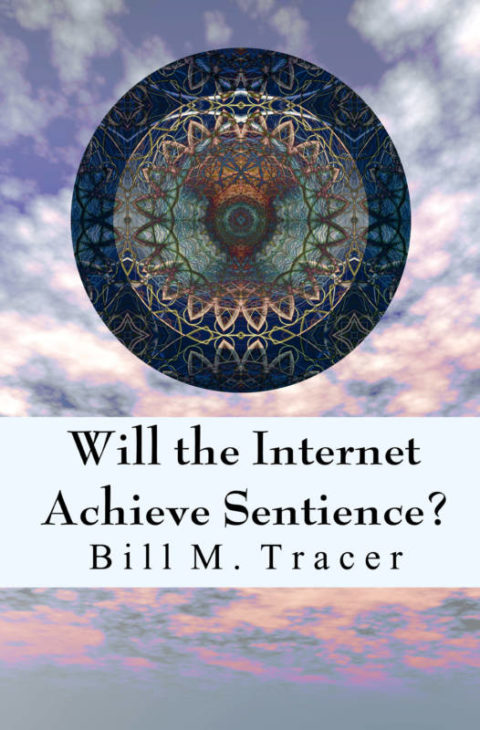 Will the Internet Achieve Sentience?