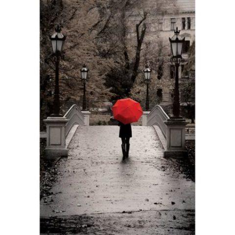 Umbrella Days