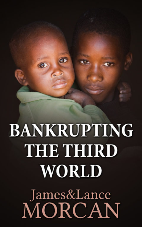 BANKRUPTING THE THIRD WORLD: How the Global Elite Drown Poor Nations in a Sea of Debt